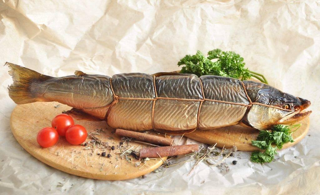 Соленая рыба во сне – к слезам или к деньгам