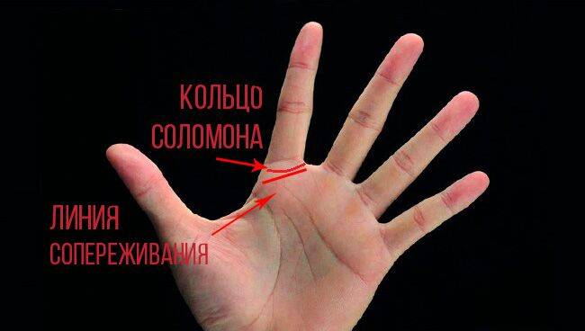 Как гадать на руке: подробное разъяснение для начинающих с фото и видео