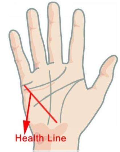 Значение линии жизни на руке: характеристика человека, знаки | узнай свою судьбу