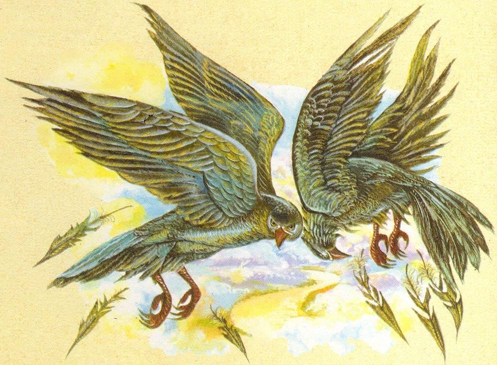 Третий подвиг стимфалийские птицы читать. стимфалийские птицы – третий подвиг геракла