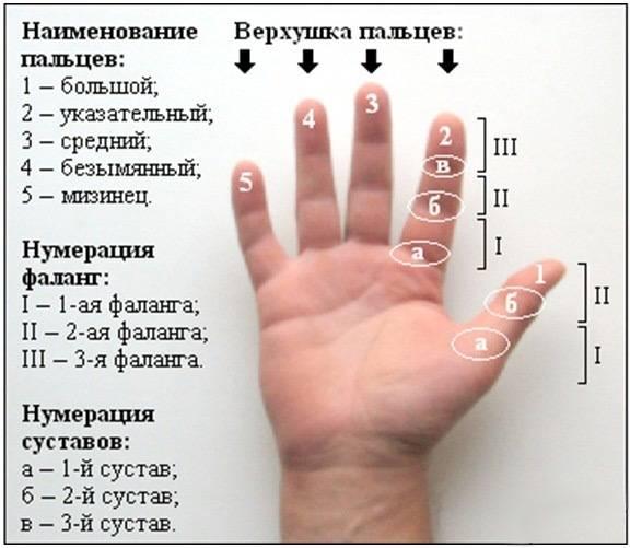 К чему чешется безымянный палец на правой или левой руке? трактовка примет и советы по нейтрализации негатива