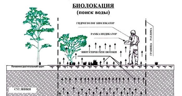 Как найти воду для колодца: обзор «дедовских» и современных методов поиска