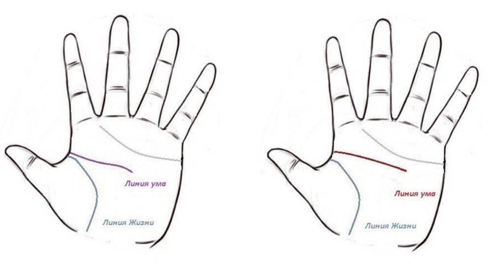Треугольник на линии ума и его значимость при чтении карты руки