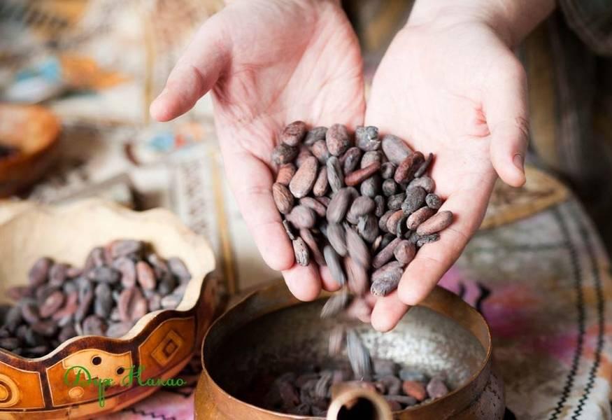 Гадание на бобах и фасоли: подробное обучение, видео, отзывы