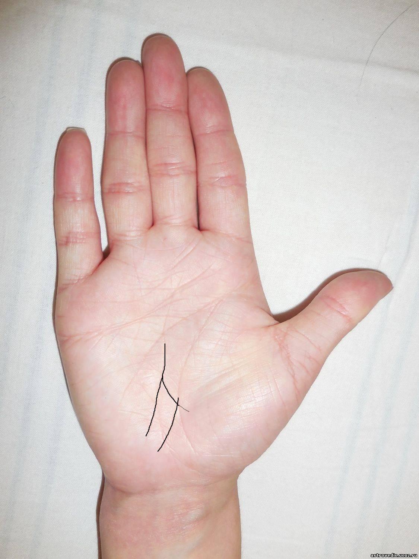 Линии на руке человека: значение