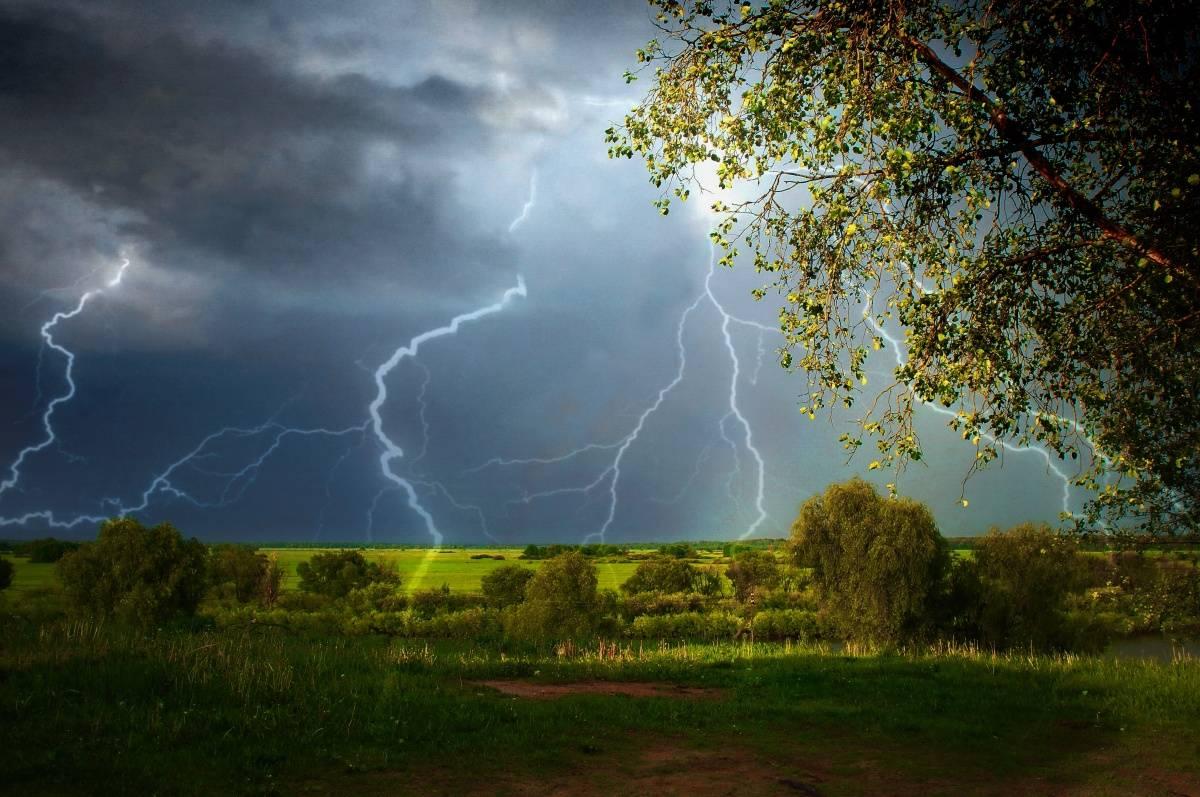 Что делать во время грозы - ветер в поле