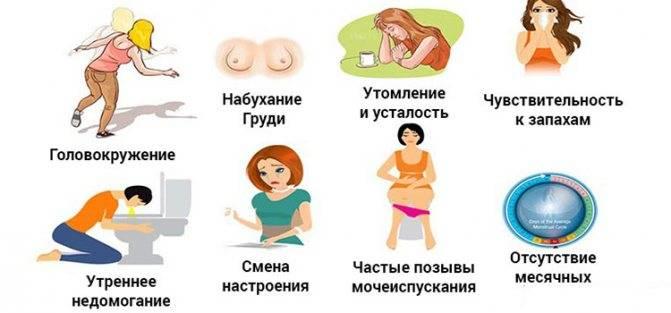 Первые признаки беременности до задержки: народные приметы