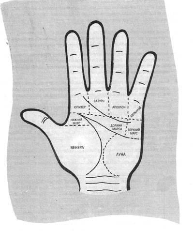 Редкие знаки на руке: хиромантия и расшифровка | узнай свою судьбу