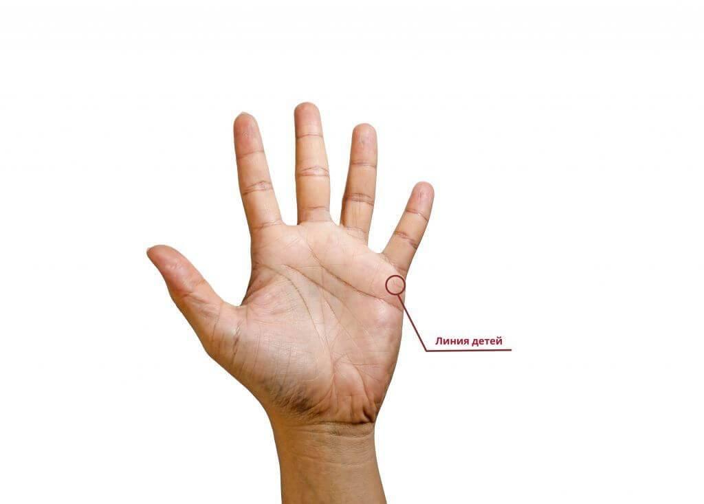 Линия здоровья на руке: фото с расшифровкой