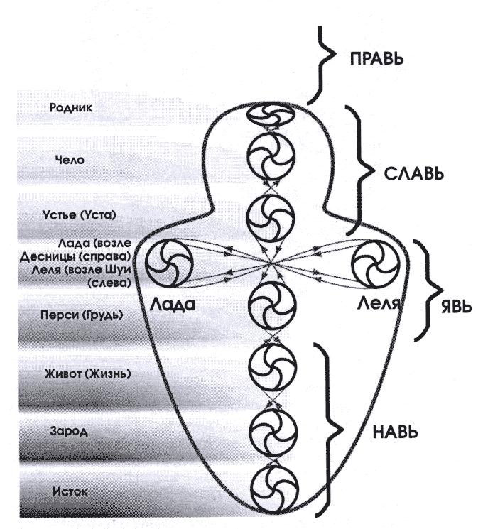 Чакры человека и их значение! детальное описание чакр. как передается энергия в теле и что это значит? чакры. описание принципов работы