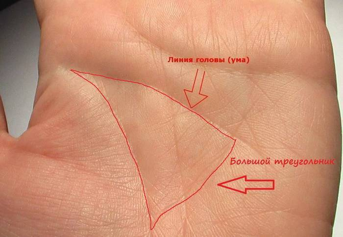 античности знаменит денежный треугольник на руке фото мне голову пришло