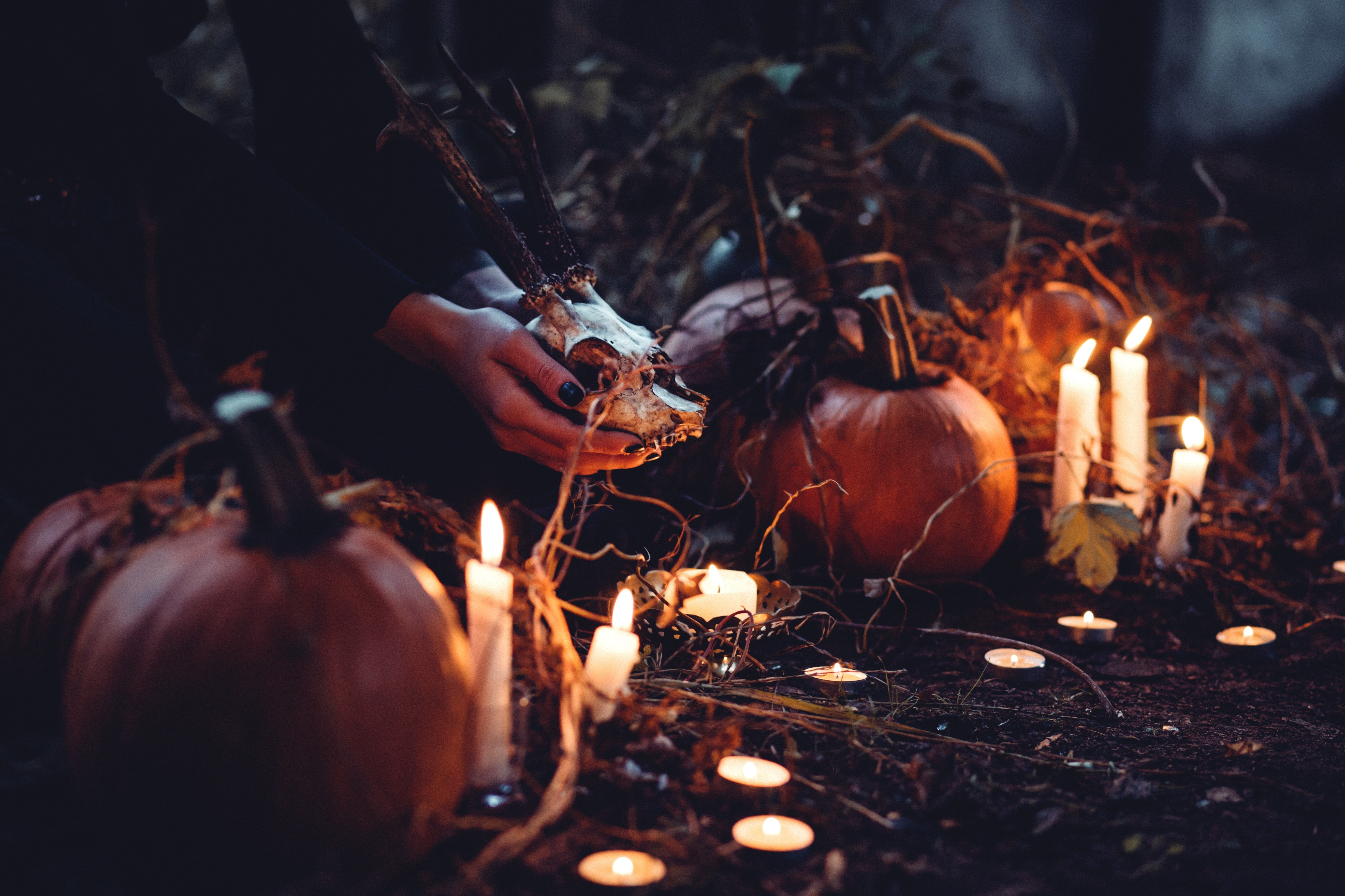 Как провести празднование хэллоуина по всем правилам