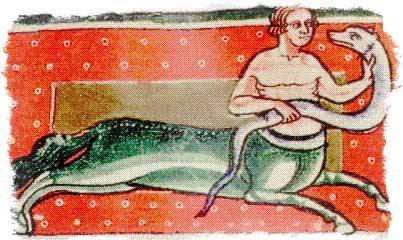 Онокентавр — получеловек-полуосел из бестиариев и легенд