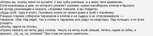 Заговоры против клопов. заговор сибирской целительницы и др.