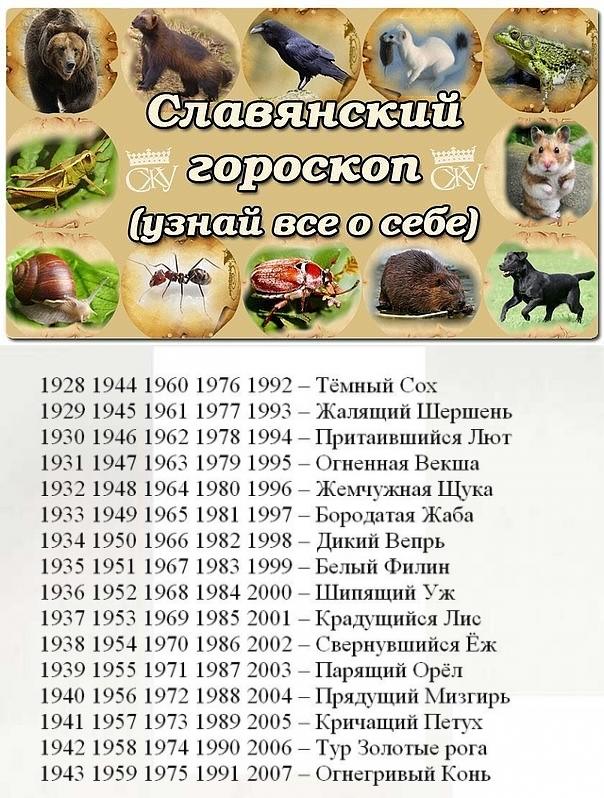 Славянский гороскоп растений   гороскопы для вас