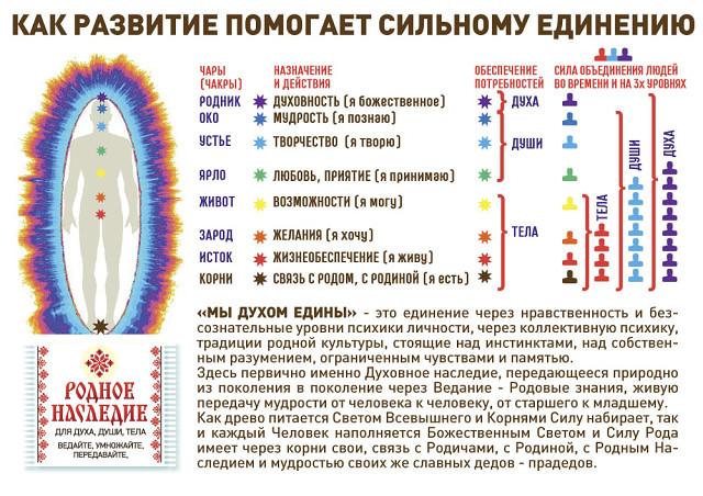 Чакры человека, их расположение и цвета: название и значениепсихоэнергетических центров