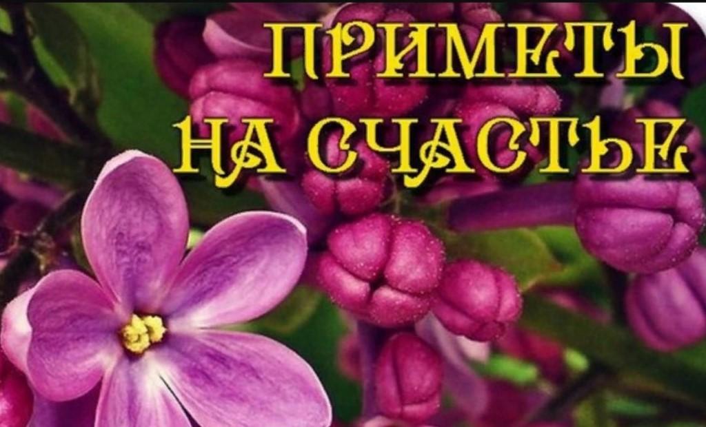 Как привлечь удачу – что такое удача и везение, их символы и знаки, почему нельзя желать удачи в православии