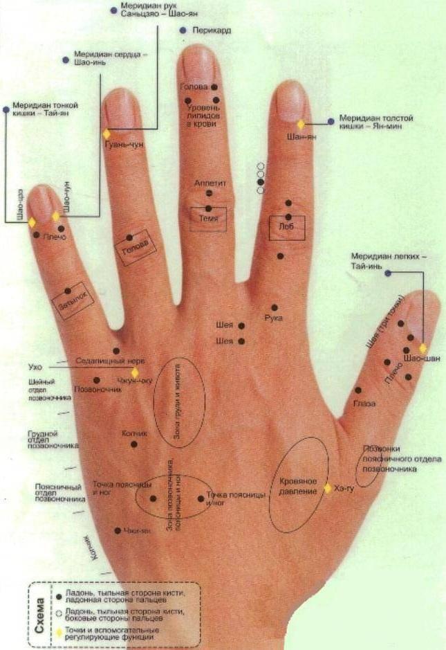 Значение родинок на ладонях и пальцах