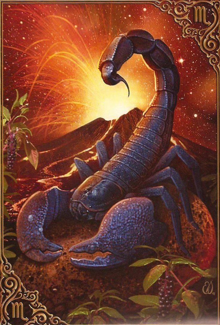 Скорпион (24.10-22.11) - знак зодиака.характеристики | звёздочка | яндекс дзен