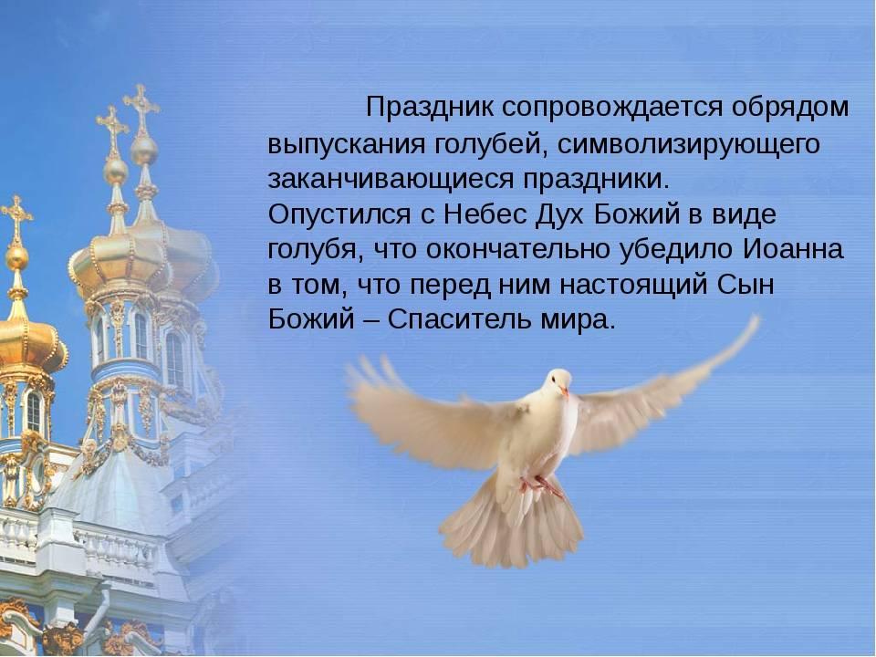Приметы о белом голубе—предвестник счастья?
