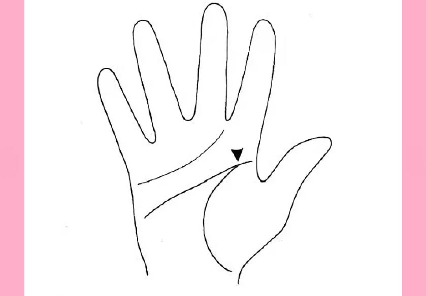 Редкие знаки на руке: хиромантия и расшифровка