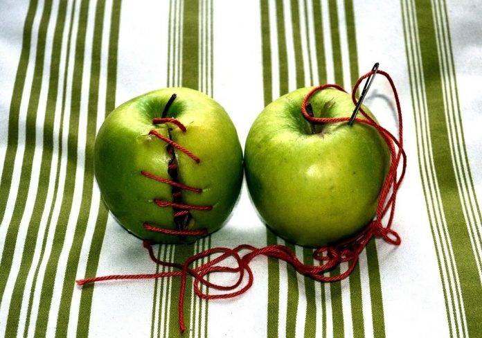 Древние привороты с использованием яблока