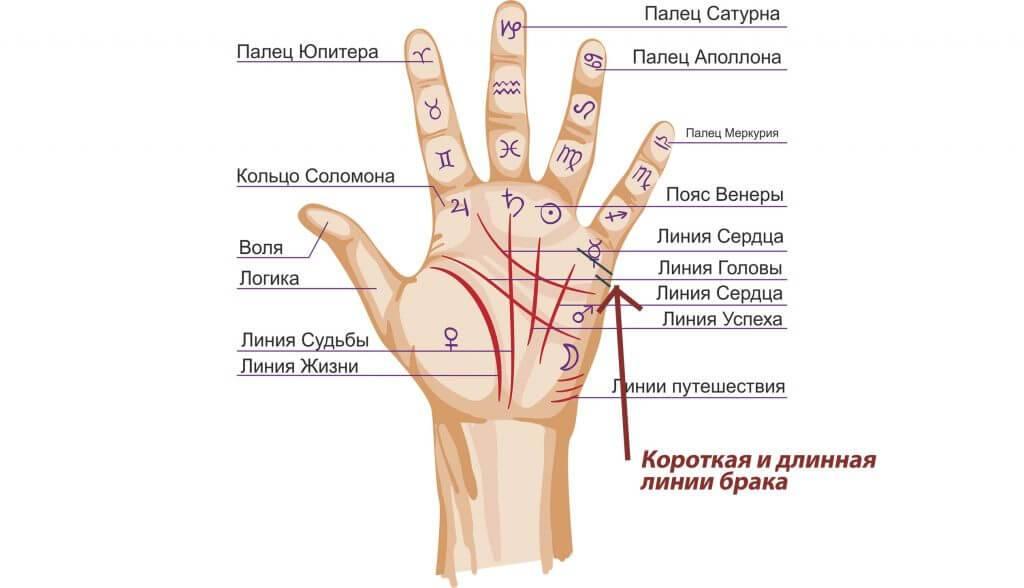Линии детей на руке — примеры, фото с расшифровками (4 фото) — нло мир интернет — журнал об нло