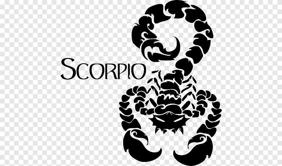 Скорпион : гороскоп на 24 ноября 2020 года для женщин и мужчин знака скорпион  по гороскопу
