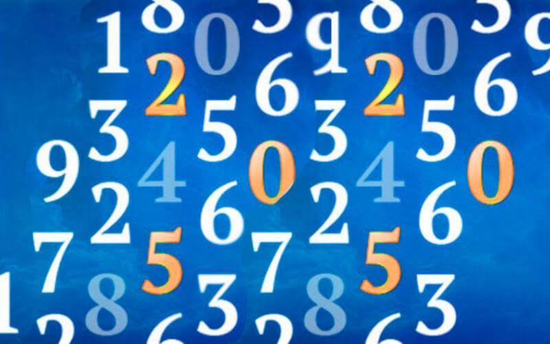 8c1b55a45f8a3a58ca357b7035bcb8c4.jpg