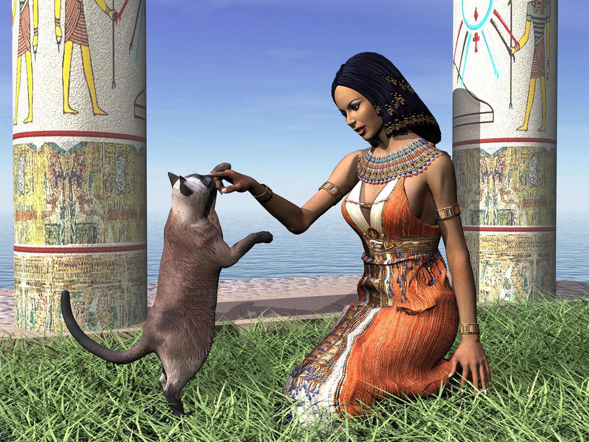 Мистические способности кошек и культ у разных народов