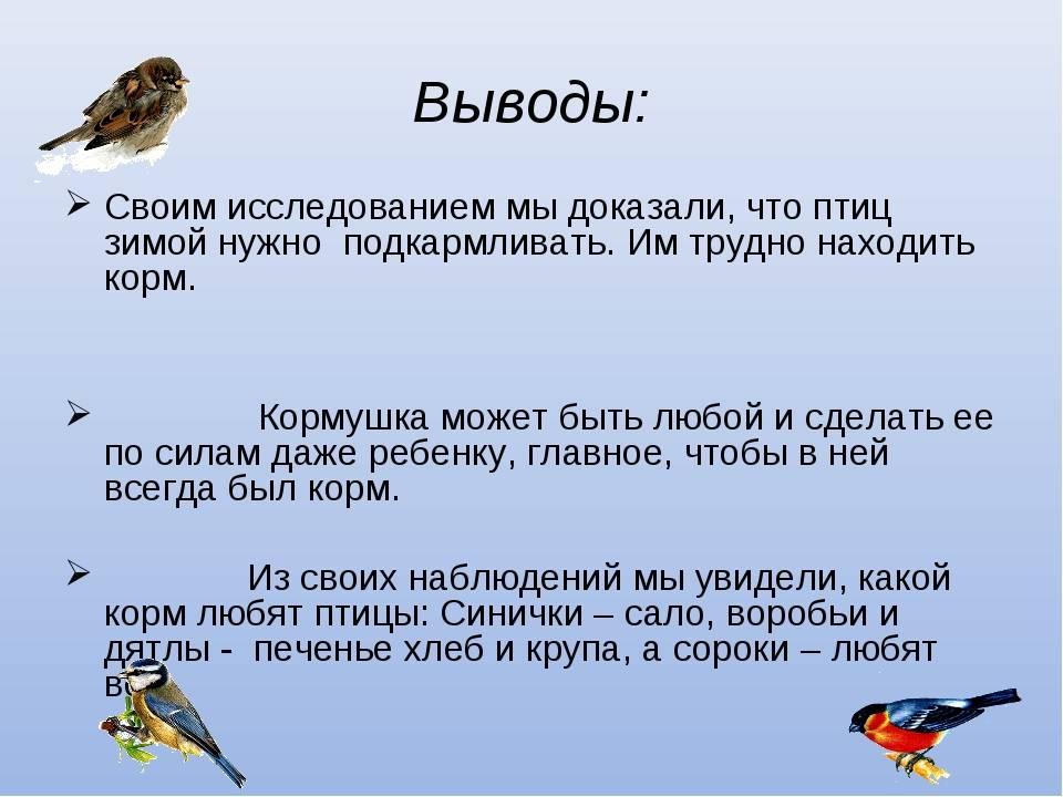 Народные приметы птицы