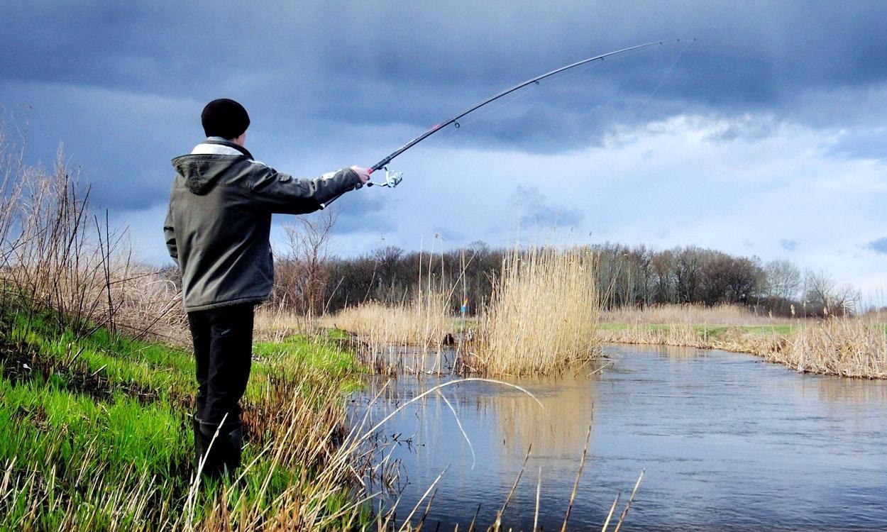 Сонник ловить на леску рыбу. к чему снится ловить на леску рыбу видеть во сне - сонник дома солнца