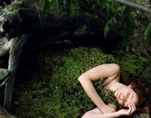 Сонник видеть человека в болоте. к чему снится видеть человека в болоте видеть во сне - сонник дома солнца