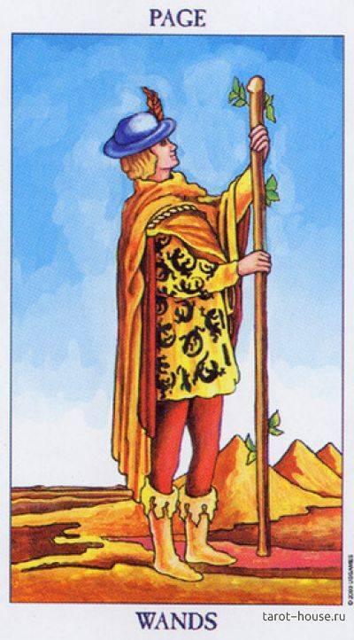 Рыцарь пентаклей: значение карты таро в раскладах - расскажем