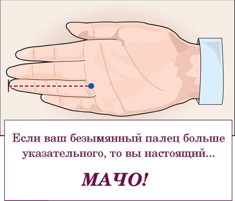 Как определить характер человека по руке