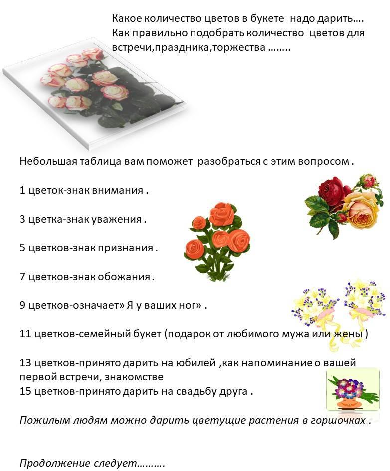 Сколько цветов можно дарить – подбираем правильное количество