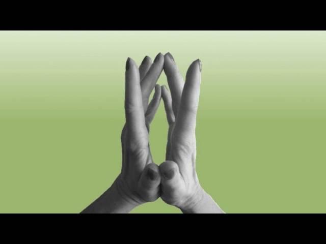 Мудры для быстрого улучшения материального положения. 36 мудр на деньги и влияние