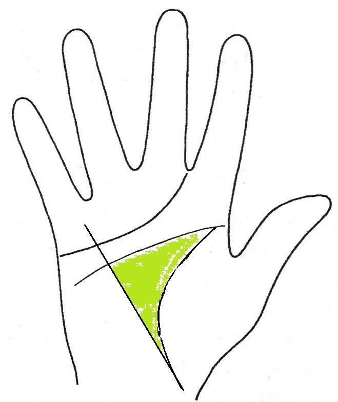 Линия смерти на руке или знаки, которых стоит опасаться