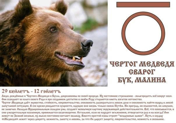Чертог медведя — в чем его особенности?