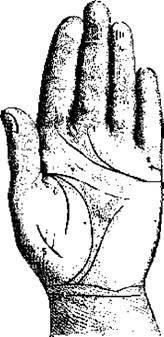 Брак и дети, линии на руке и особые знаки, связанные с ними | узнай свою судьбу