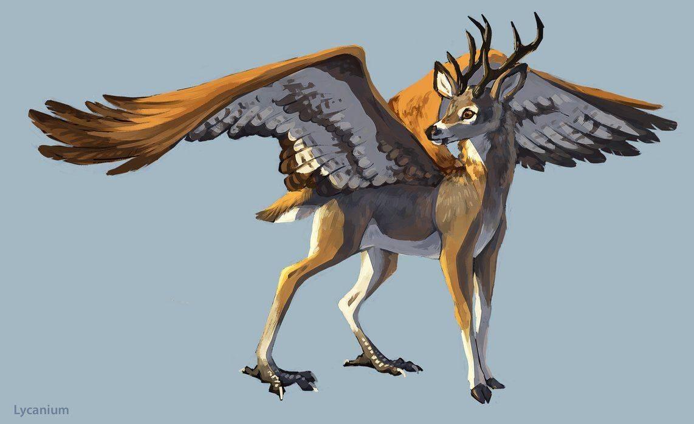 Охоту на волков открыли в могилёвской области. из-за хищников в регионе сокращается популяция оленей и косуль