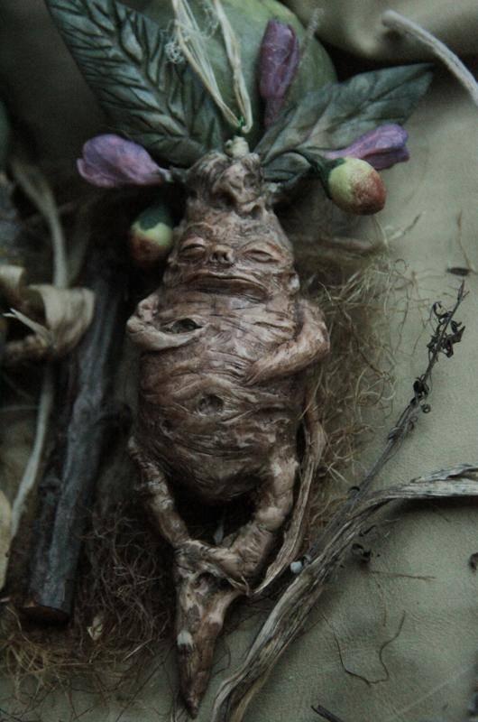 Мандрагора что это за растение