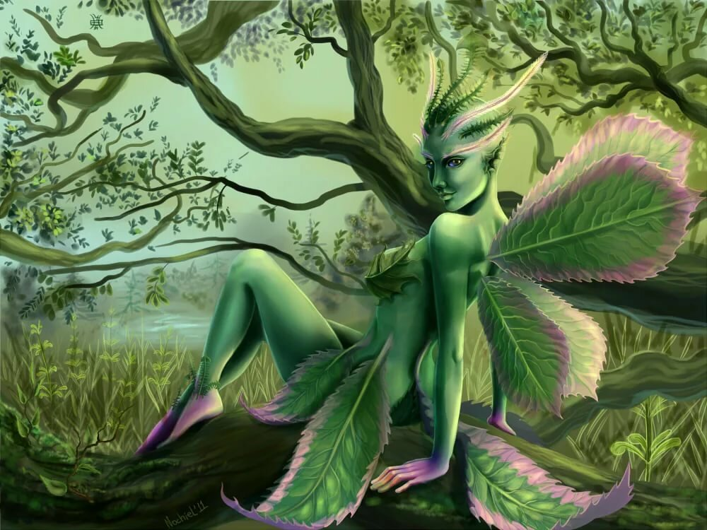 Зелёные дамы » страшные истории