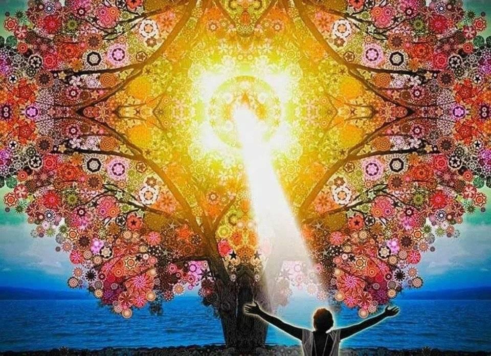Утренние аффирмации . настрои на благополучный день. ⋆ гармония. осознанность. благополучие