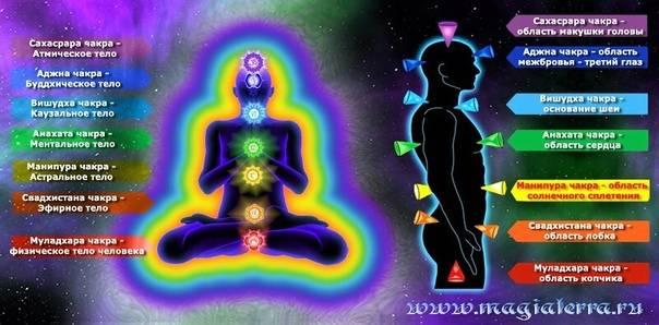 Энергетические каналы человека: нади и чакры в теле человека и их описание