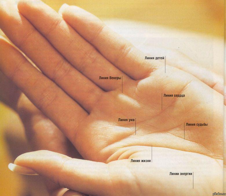 Линия брака на руке, все тайны семейной жизни | узнай свою судьбу