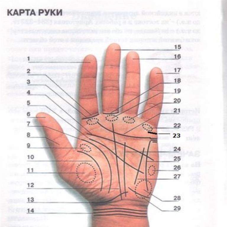 Что могут рассказать приметы о родинках на пальцах рук?