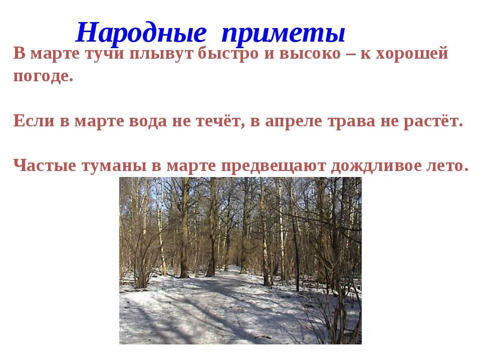 Самые красивые цитаты и статусы о весне