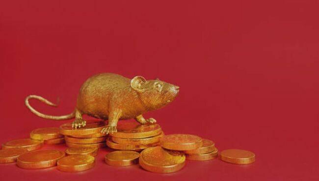 Кошельковая мышь для привлечения денег: что это такое, как зарядить, отзывы