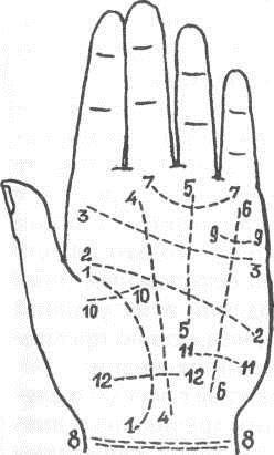 Пояс венеры на руке: что это такое, значение в хиромантии